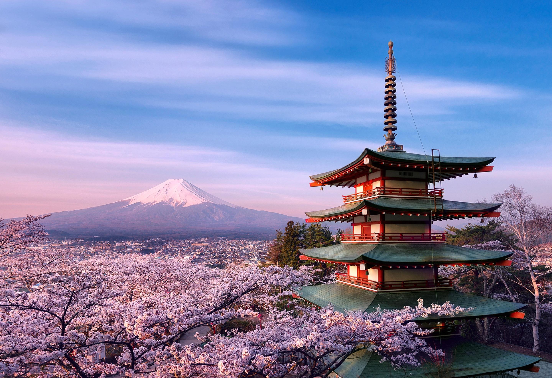 Правила ввоза в Японию