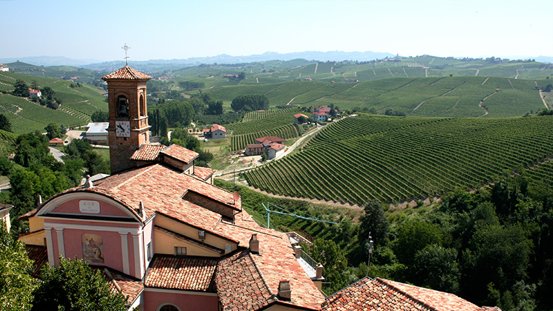 виноградники в Италии